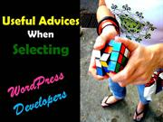Useful Advices When Selecting WordPress Developers