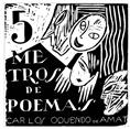 5 metros de poemas
