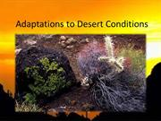 Adaptation in plants in deserts