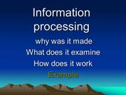 info processing theory