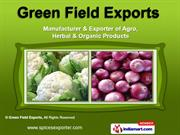 Agro & Herbal Products by Green Field Exports, Jodhpur