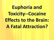Euphoria and Toxicity-Cocaine Effects to the Brain- A Fatal Attraction