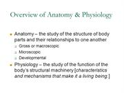 Anatomy Unit 1 Introduction to Anatomy