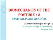 Posture  Biomechanics 3 Sagittal plane analysis