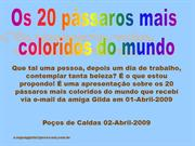 Os pássaros mai coloridos do mundo