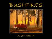 Bushfires - Australia