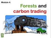 4. role of forests in climate change