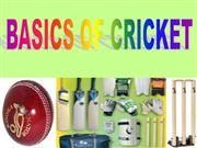 BASICS OF CRICKET