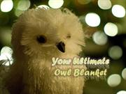 Your Ultimate Owl Blanket