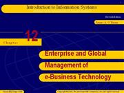 Management Information System ppt