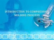 Introduction to Compression Molding Process