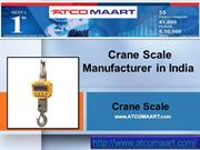 Crane Scale Manufacturers in India