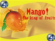 REPORT FOR  MANGO SOAP PRODUCT