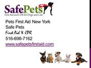 Pets First Aid New York, Safe Pets First Aid