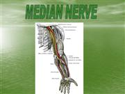 median nerve