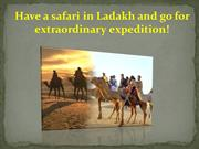 Have a safari in Ladakh and go for extraordinary expedition