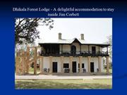 Dhikala Forest Lodge - A delightful accommodation to stay inside Jim C