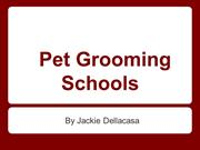 Where To Find Pet Grooming Schools