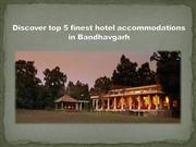 Discover top 5 finest hotel accommodations in Bandhavgarh