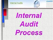 Riyashee-Process of Internal Audit