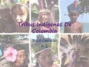 Tribus Indgenas De Colombia