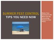 Summer Pest Control Tips You need Now - Make Your Summer A Bit More Fu