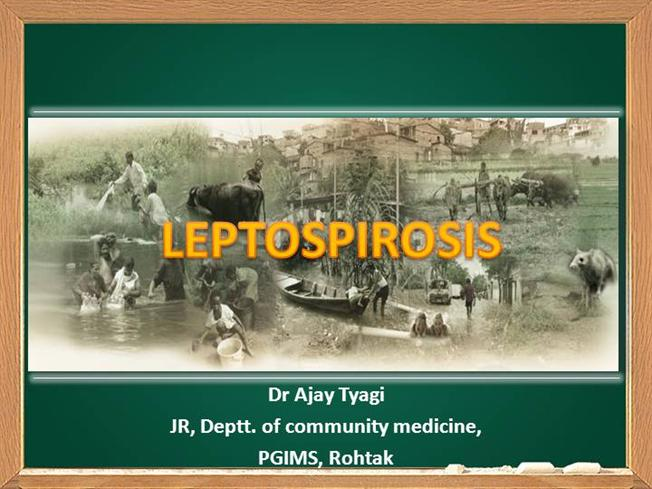 Leptospirosis. Ppt download.