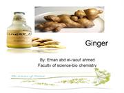 ginger effect