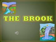 The Brook