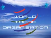 roles of WTO