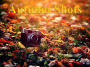 AUTUMN SHOTS