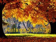 AUTUMN SUNSHINE