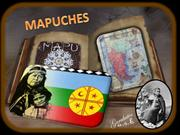 Musical Instrumentos around the World 5 (Mapuches)