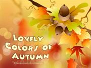 Lovely Colors of Autumn (4)