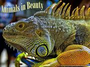 Animals in Beauty (13)