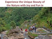 Experience the Unique Beauty of the Nature in Darjeeling