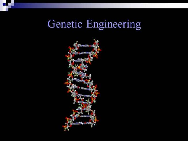 Genetic engineering essay