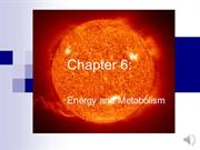 PB_Chapter_6_-_Energy_and_Enzymes (DHD Recorded)