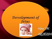 fetal & embrionic development of human
