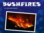 Leah and Maddy - Bushfires