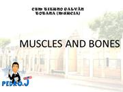 4.Muscles and bones