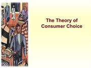 Price System and the Theory of the Firm (1)