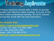 SAP Online Training and Placement Support on all modules