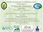 Soil the Foundation of an Organic Farm (3)