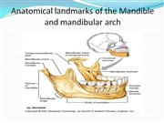 anatomical landmarks of mandible
