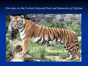 Few days in Jim Corbett National Park and Memories of Lifetime