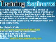 Online Training & Placement on all  IT Courses Training at TA