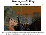 Shai Zakai, dancing against tree cuttings copyrights