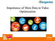 Meta_Data_in_Video_Optimization