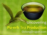 Uncovering Pu-erh Tea Production